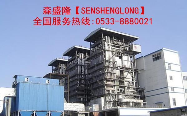 锅炉除垢剂SZ810产品应用
